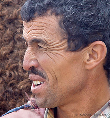 CAMELEER IN ATLAS MOUNTAINS . . .  (MOROCCO, FAS-MEKNAS, IFRAN) (KAROLOS TRIVIZAS) Tags: morocco fasmeknas ifran cameleer camel portrait face physiognomy look eyes moustache wrinkles crowfoots expression person man head glance glimpse character