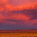 Mono Basin Sunset