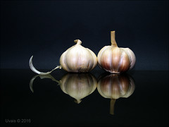 Garlic Pods (uvaisjm - Al Seylani Photography) Tags: still life composition tabletop garlic reflection