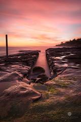 Lurline Bay lights up (Brian Bornstein) Tags: lurlinebay lurline sunrise longexposure waves water brianbornstein sydney rocks seascape reef canon6d pastels nsw