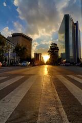 Reforma II (Pablo Leautaud.) Tags: mexico mexicocity cdmx centro granangular wideangle ultra urban urbano pleautaud avenida reforma sunset atardecer