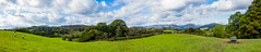 Lakes Pano (Jon°) Tags: sonyrx100 sony rx100 delamere outdoor october 2016 landscape field grass plant sky grassland tree forest