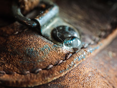 Hydrophobic Boot (eddm1962) Tags: waterbead hydrophobic boot leatherworkboot shoe waterdrop eyelet leather wetleather