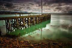 Old Jetty- a home for the birds (Kevin_Jeffries) Tags: jetty wharf sea port seabirds new home jeffries nikon nikkor d7100 1685mm old rocks wooden reflections coastal newzealand oamaru capewanbrow clouds boats unsafe otago oamarubluepenguincolony idyllic green bird sky nature