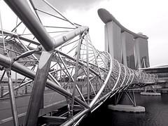 Helix (Luc08) Tags: touristspot powershot canon bw blackandwhite bnw marinabaysands steelstructure bridge helix singapore