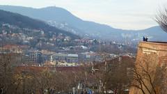 P1000757a (SeppoU [Read 'About' for info!]) Tags: unkari magyarország hungary budapest buda linnavuori castlehill turisti tourist näpsy snapshot panasonic lumix