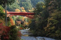 Bridge that crosses Hikawa gorge (seiji2012) Tags:       okutama bridge tamariver nationalpark