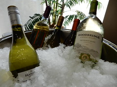 wine getting cold (Just Back) Tags: winw vino vin wein bottle cold chilled white fluid alcohol icy bowl celebration refreshment memorial columbia sc library carolina drink sauvignon blanc california