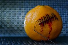 """ Macro Mondays "" Stitched - Blood Orange (mc_icedog) Tags: fruit macro blood orange lighting stitched shallow depth field tripod background copyright"