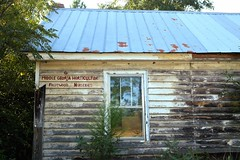 Fruitwood (Neal3K) Tags: slowexposures2016 ruralsouth concordga fruitwood abandoned window reflection tinroof
