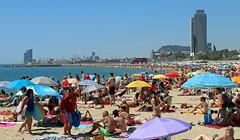 Juliol_1253 (Joanbrebo) Tags: platjadelbogatell barcelona canoneos80d efs1855mmf3556isstm eosd autofocus platja playa beach greatshotss