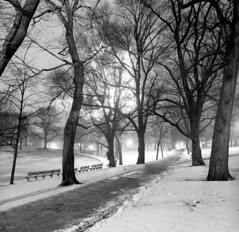 121059 01 (ndpa / s. lundeen, archivist) Tags: nick dewolf nickdewolf december bw blackwhite photographbynickdewolf boston massachusetts beaconhill 1959 1950s film 6x6 mediumformat monochrome blackandwhite common bostoncommon park lights christmaslights trees path pathway benches parkbenches wadingpool duckpond snow winter