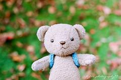 ( ()) Tags: pentax m42 spf  film  filmphotography rossmann 200 rossmann200 supertakumar55mmf18 takumar 55mm f18 55 18 bokeh japan    bear karuizawa