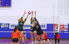 IMG_6881 (SJH Foto) Tags: girls volleyball high school allentown central catholic somerset team teen teenager net battle spike block action shot jump midair