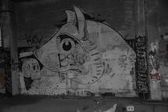 DSC_0474 (Under Color) Tags: leipzig graffiti lost places urban exploring leipsch walls