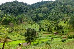 20161013-IMG_1861 (Konrad K. M.) Tags: myanmar kalaw shan