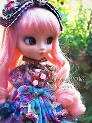 (Linayum) Tags: pullip pullipalicedujardin pullipalicedujardinpinkversion pullips alicedujardinseriespink junplanning doll dolls mueca muecas toys juguetes linayum