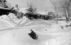 View of automobiles, houses and yards, buried in snow drifts, after the 1982 snowstorm, 2377 Elm Street in the South Park Hill neighborhood of Denver Colorado. (Denver Public Library Digital Collection)