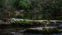 Sanctuary (Jon Uriah) Tags: park wild mountains nature creek forest canon reflections river print lens landscape photography eos 50mm rocks gallery jonathan hiking tennessee great 9 rapids national ii frame 7d 16 smoky f18 sanctuary uriah ratio fifty lightroom nifty waterscape the