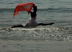 Dancer (annikas21) Tags: ocean beach scarf dancer jete