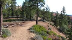 IMG_0597 (NYHikerJohn) Tags: utah loop july trail fairyland 2014 brycecanyonnationalpark fairylandlooptrail johnridge nyhikerjohn americanhikingadventurescom