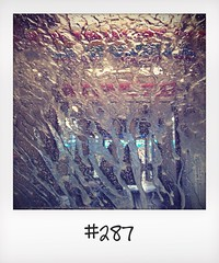 "#DailyPolaroid of 12-7-14 #287 • <a style=""font-size:0.8em;"" href=""http://www.flickr.com/photos/47939785@N05/14545372588/"" target=""_blank"">View on Flickr</a>"