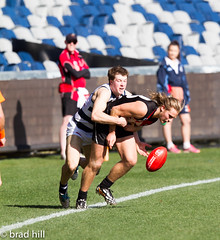 """IMG_9069 (Go to """"Albums"""" for all pics) Tags: cats club football dolphins frankston geelong vfl"""