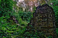 Ruin (EmilJoh) Tags: old trees plants plant tree nature stone wall forest evening leaf ruins day sweden hiking stones natur ruin hike sharp naturereserve late stonewall walls leafs stonewalls hdr hikingtrail skvde lateevening evning skovde silverfallet owergrown