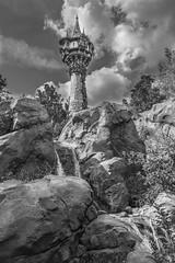 B&W week Rapunzel's Tower (joe.diebold) Tags: bw epcot magic disney disneyworld waltdisneyworld rapunzel magickingdom spacemountain towerofterror cinderellacastle fountainofnations imaginationpavilion hollywoodstudios rapunzelstower