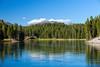 Lazy River (ModernDayGilligan) Tags: usa mountain forest river unitedstates yellowstonenationalpark wyoming yellowstoneriver nationaltreasures summervacation2014