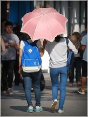 Pink Parasol (1980blue Street) Tags: street girls summer woman hot cute sexy girl beautiful asian japanese women legs candid chinese cardiff korean parasol thai oriental umberella queenstreet philipino philipina japanes