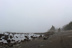 Fog, Cloudy and cool day to walk on coastline (daveynin) Tags: fog coast rocks cloudy nps footprints coastline olympic seastack splitrock deaftalent deafoutsidetalent deafoutdoortalent