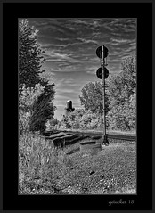Trackside Signal (the Gallopping Geezer 3.6 million + views....) Tags: county railroad travel bw white black station rural train canon fence lights blackwhite michigan tracks rail transportation rails depot newhaven signal freight geezer corel macomb 2013