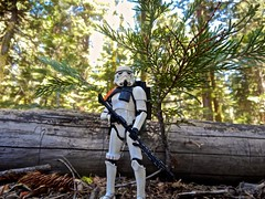 Hunting (omarr.guzman) Tags: california trooper black nerd toys star sand geek action yosemite dome empire figure half series wars dork blaster