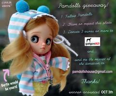 Pamdolls giveaway! <3 Galgos (♥PAM♥dolls♥) Tags: pamdolls