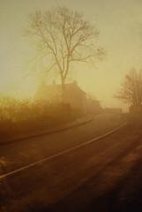 fog in Sheepscar Leeds (marti mann) Tags: fog leeds contrejour backlighting