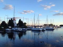 Hello from Humber Bay Marina, Toronto (peggyhr) Tags: blue trees red sky seagulls lighthouse white lake toronto ontario canada black green clouds marina reflections dusk ducks ripples sailboats iphone peggyhr humberbaymarina
