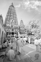 India_0169