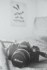 Nikon FM   VSCOcam B1 (Nerd Gazette) Tags: film blackwhite december disney filmcamera oswald ais nikonfm 2013 vsco justinjayubo vscocam justinhasacamera