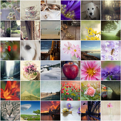 i love your work 57 (*silviaON) Tags: friends collage mosaic favorites august september 2014