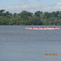 Day1: Sarasota 2014 Training Camp (PINK PHURREE BCS Dragon Boat Team) Tags: clearlaketexas pinkphurree allhandsabreast cajuninvasion
