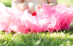 Lacey-8 (heather morris photography) Tags: pink baby girly session tutu