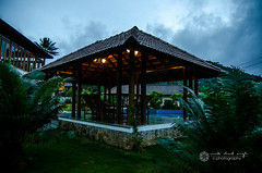 DSC_9482 (Vivek Sheel) Tags: houseboat kerala cochin teagarden kochi backwaters thekkady munnar allepy alapuzha