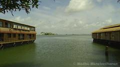 House Boats @ Kuttanad (Madhu Muraleedharan) Tags: houseboat kuttanad kerala madhu madhumuraleedharan
