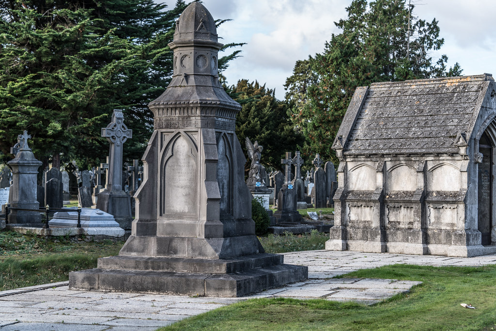 A QUICK VISIT TO GLASNEVIN CEMETERY[SONY F2.8 70-200 GM LENS]-122084