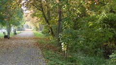 Selztal, Ingelheim