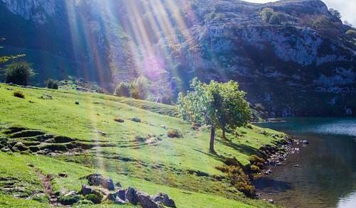 #spain_gallery #nikonistas #nikon_dsrl_users #total_españa #total_asturias #asturfoto #lagosdecovadonga #asturias #asturias_ig #españa #spain #ig_asturias #asturiasparaisonatural #nature #paraisonatural #naturaleza #loves_asturias #paisaje #nikon #nikonto