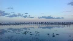 Miramar (Rigoletto Resndez) Tags: tampico beach playa miramar mar ocano atlntico tamaulipas mxico cielo