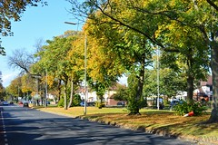 Photo of Aigburth Road, Aigburth