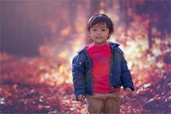 Fall in Love (Ethan|xxvi) Tags: portrait outdoor canon 5d little boy autumn fall adorable cute forest bokeh fallcolours red cloths jacket straight hair soft light evening